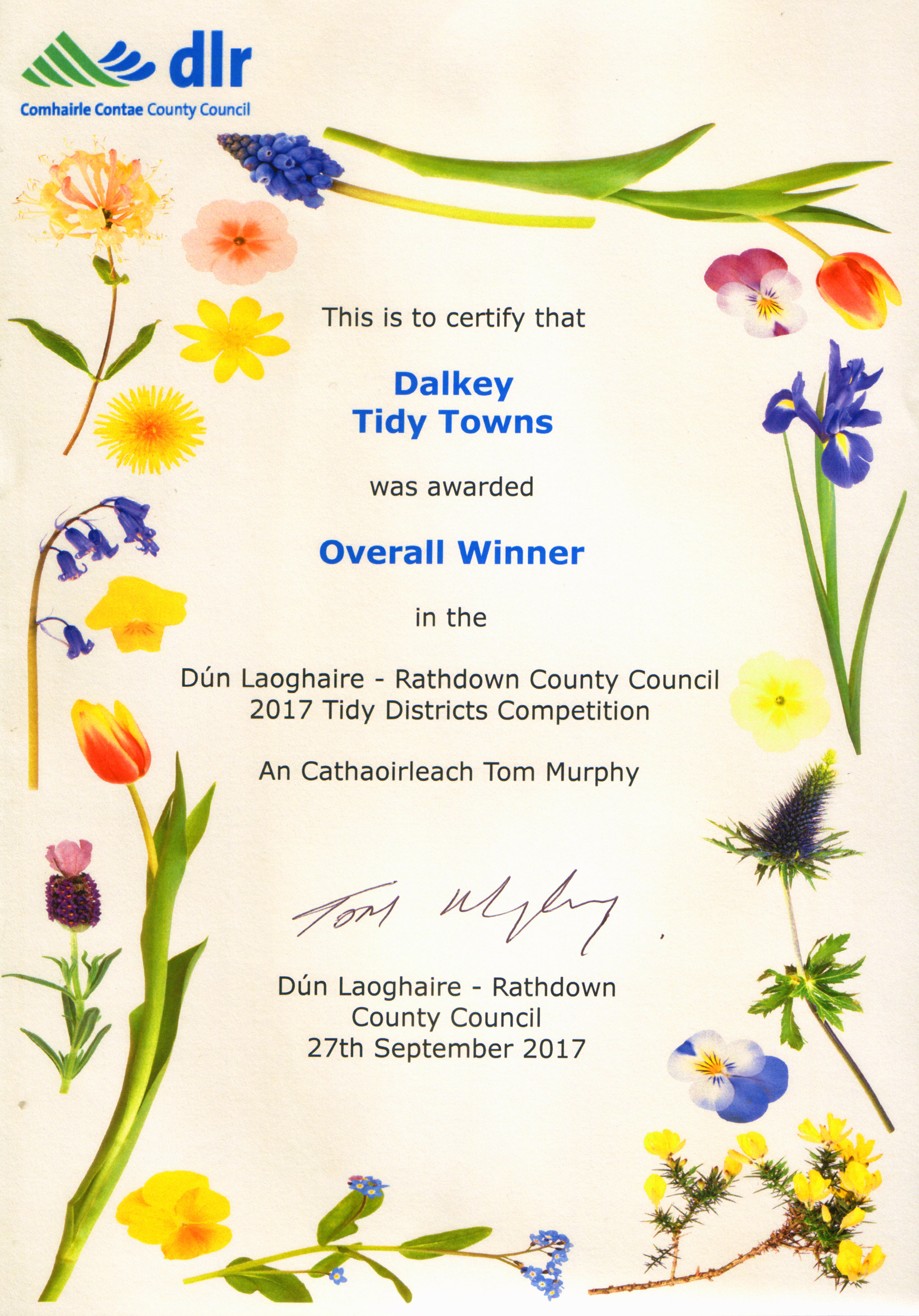 Dalkey tidy towns achievements 2000 to 2018 with links to dlrcc dlrcc tidy districts competition best town village pic pic pic m4hsunfo